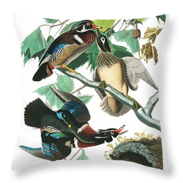 Ornithologist Throw Pillows