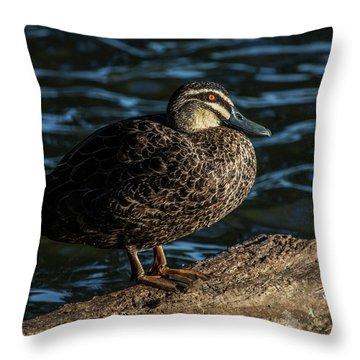 Duck On A Log Throw Pillow