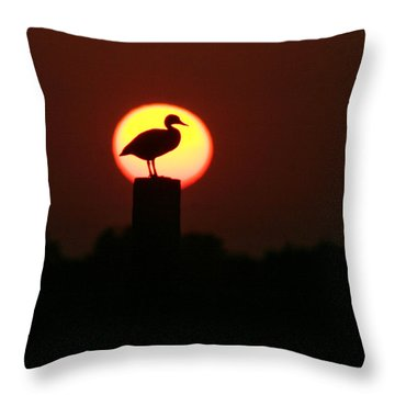 Duck On A Post Throw Pillow