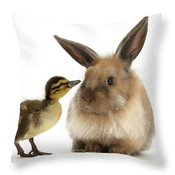 Duck Out Bunny Throw Pillow