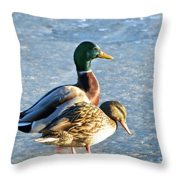 Duck Pair On Frozen Lake Throw Pillow