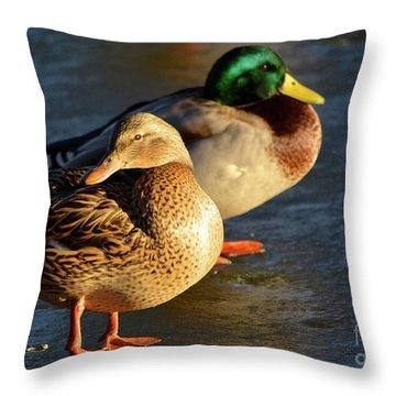 Duck Pair Sunbathing On Frozen Lake Throw Pillow