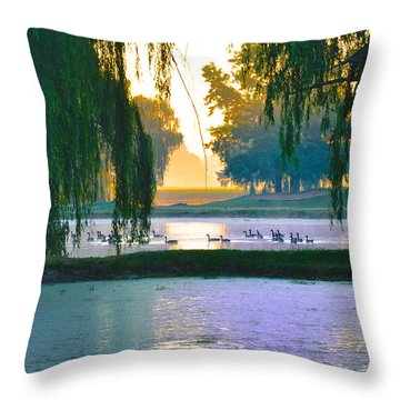 Duck Pond At Dawn Throw Pillow by Bill Cannon