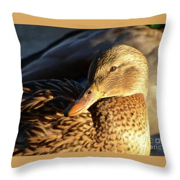 Duck Sunbathing Throw Pillow