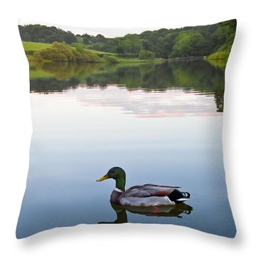 Duck Throw Pillow by Svetlana Sewell