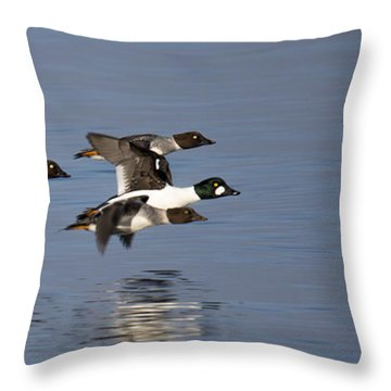 Duckin Out Throw Pillow by Randy Hall