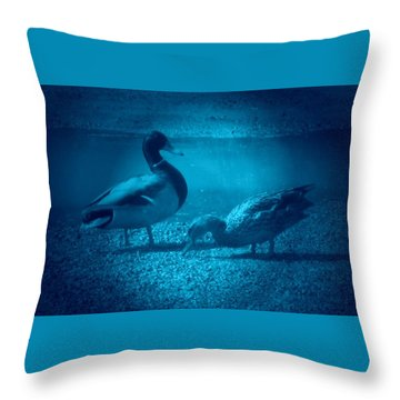 Ducks #2 Throw Pillow