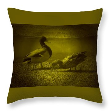 Ducks #3 Throw Pillow