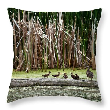 Ducks All In A Row Throw Pillow