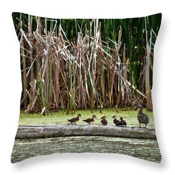 Ducks All In A Row Throw Pillow