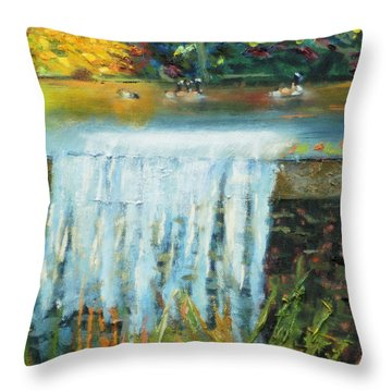 Ducks And Waterfall Throw Pillow