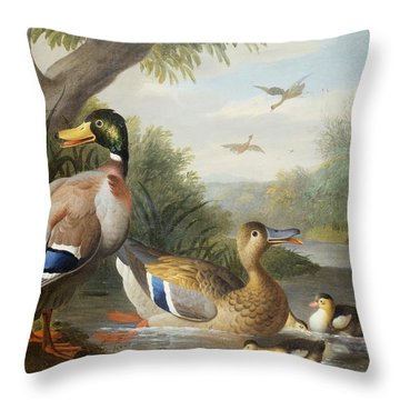 Ducks In A River Landscape Throw Pillow by Jakob Bogdany