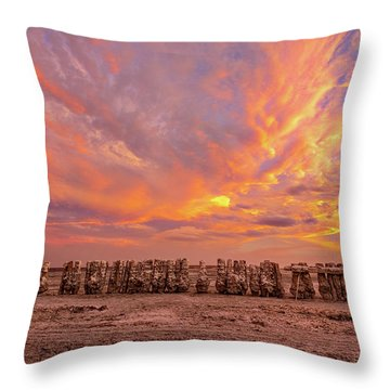 Throw Pillow featuring the photograph Ducks In A  Row by Peter Tellone