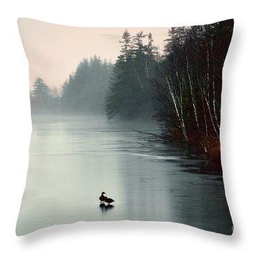 Ducks On A Frozen Pond Throw Pillow