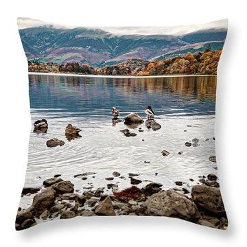 Ducks On Derwent Throw Pillow
