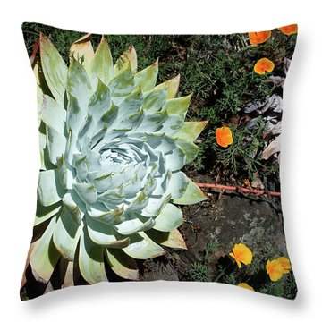 Dudleya And California Puppy Throw Pillow by Catherine Lau
