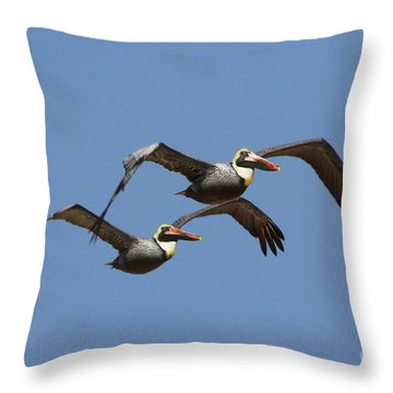 Duel Pelicans In Flight Throw Pillow