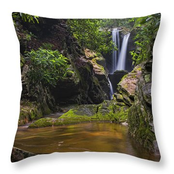 Dugger Falls Throw Pillow
