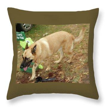Duke Throw Pillow by Jerry Battle