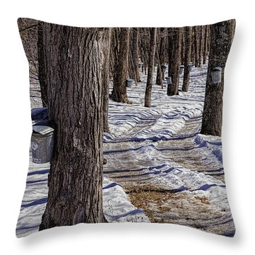 Throw Pillow featuring the photograph Dummerston Buckets by Tom Singleton