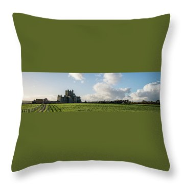Dunbrody Abbey Throw Pillow