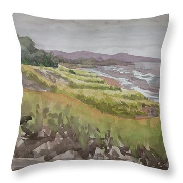 Dune Grass Field Throw Pillow by Bethany Lee
