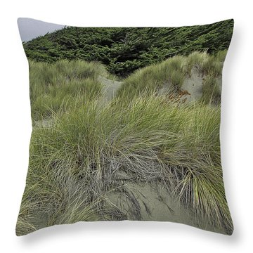 Bodega Dunes #3 Throw Pillow