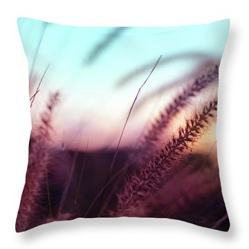 Throw Pillow featuring the photograph Dune Scape by Laura Fasulo