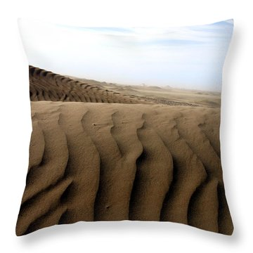 Dunes Of Alaska Throw Pillow