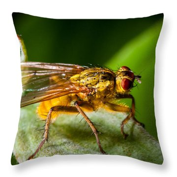 Dung Fly On Leaf Throw Pillow