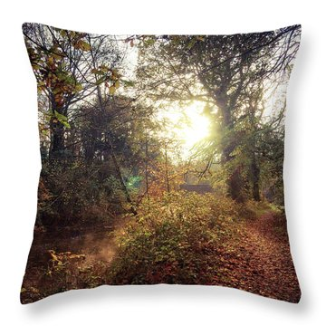 Dunmore Wood - Autumnal Morning Throw Pillow
