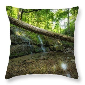 Dunnfield Creek  Throw Pillow