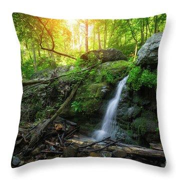 Dunnfield Creek Sunrise  Throw Pillow