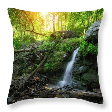 Throw Pillow featuring the photograph Dunnfield Creek Sunrise  by Michael Ver Sprill
