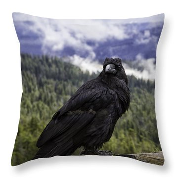 Dunraven Raven Throw Pillow