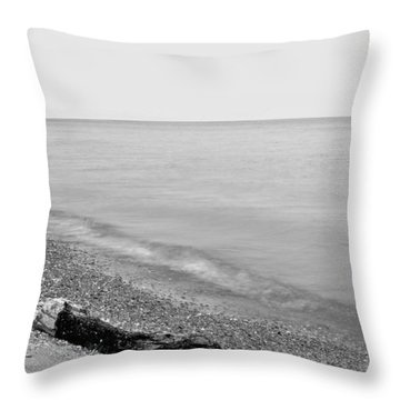 Durand Beach In Bw Throw Pillow by Justin Connor
