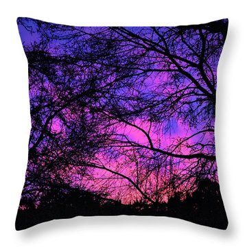 Dusk And Nature Intertwine Throw Pillow