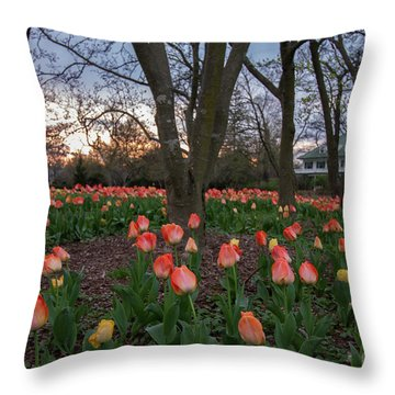 Throw Pillow featuring the photograph Dusk At Sherwood Gardens by Chris Scroggins