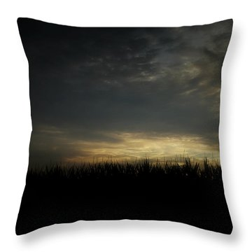 Dusk Throw Pillow by Cynthia Lassiter