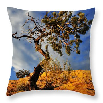 Throw Pillow featuring the photograph Dusk Dance by Skip Hunt