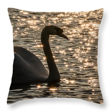 Dusk Descends On The Waters Throw Pillow