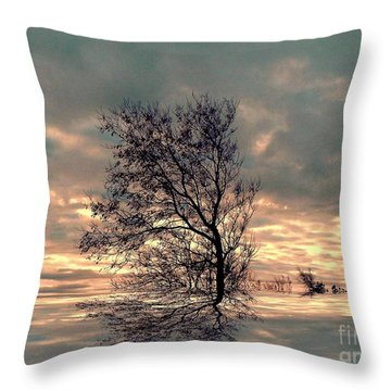 Throw Pillow featuring the photograph Dusk by Elfriede Fulda