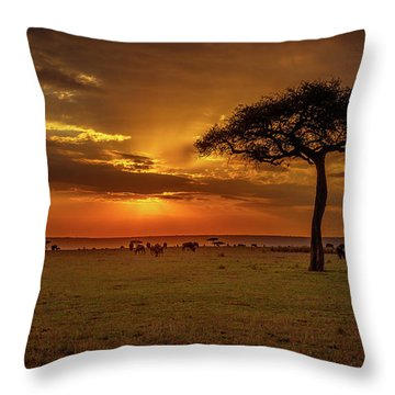Dusk Over  The Serengeti Throw Pillow