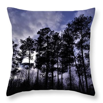 Dusk Settles Throw Pillow