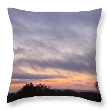 Throw Pillow featuring the photograph Dusk by Skyler Tipton