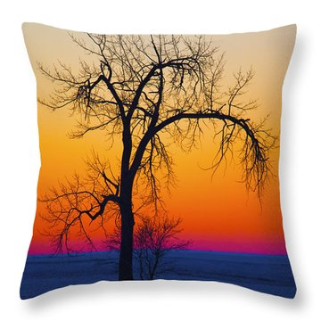 Dusk Surreal.. Throw Pillow