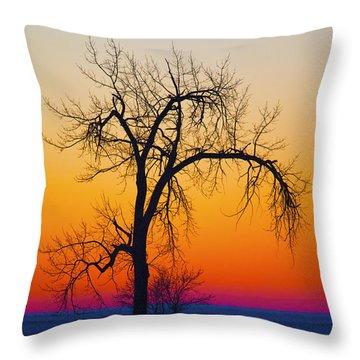 Dusk Surreal.. Throw Pillow