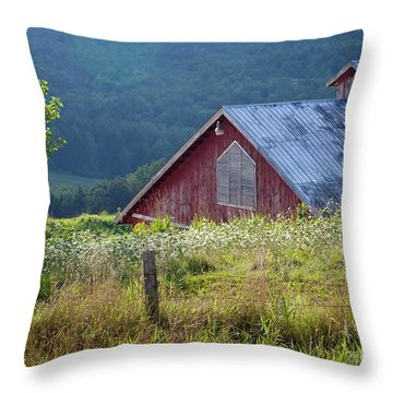 Throw Pillow featuring the photograph Dusk View by Susan Cole Kelly