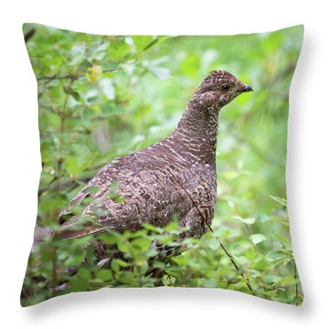 Dusky Grouse Throw Pillow