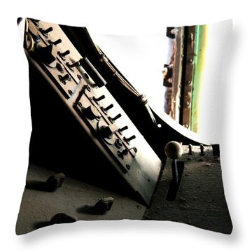 Dust Throw Pillow by David S Reynolds
